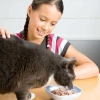 Як і чим годувати кішку