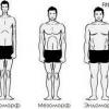 Як визначити тип чоловіків