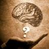 Як розвинути інтелект?