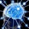 Як розвинути мозок?