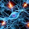 Як поліпшити роботу мозку