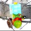 Годівниця для птахів з коробки з-під соку
