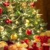 Які свята у грудні?