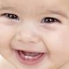 Перші зуби