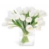 Посадка тюльпанів в домашніх умовах