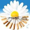 Профілактика тютюнопаління