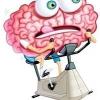 Тренування мозку
