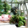 Зимовий сад в заміському будинку